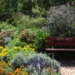 Rotary Park Flowers and Bench